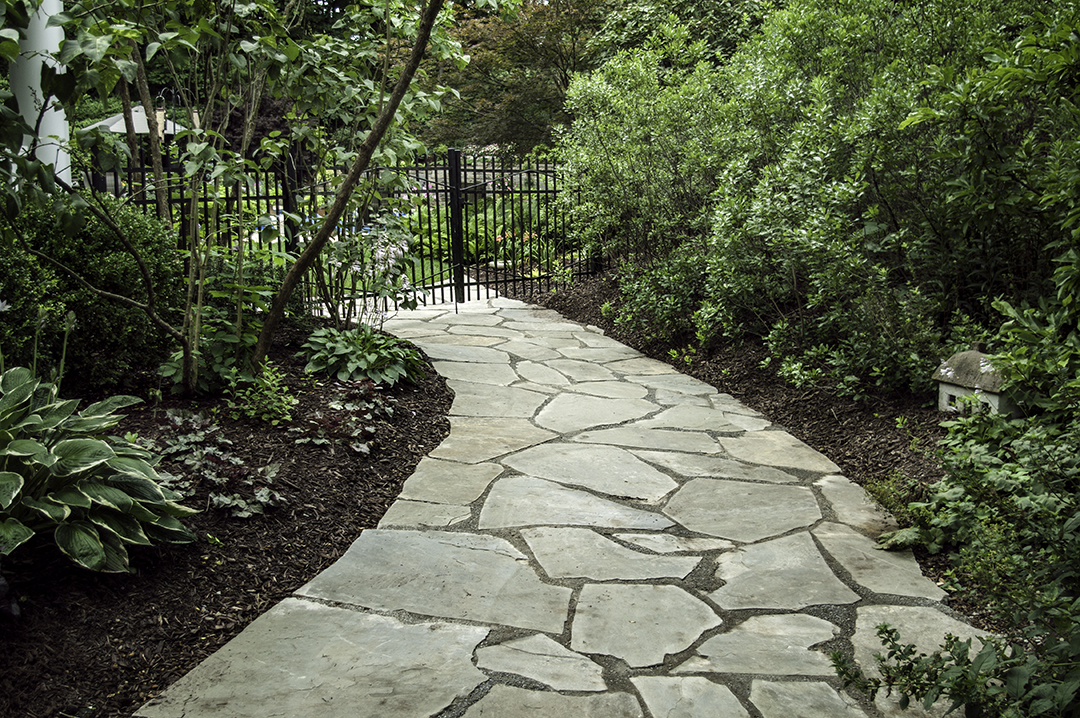 Naturally wooded lot Renovation with mature plantings