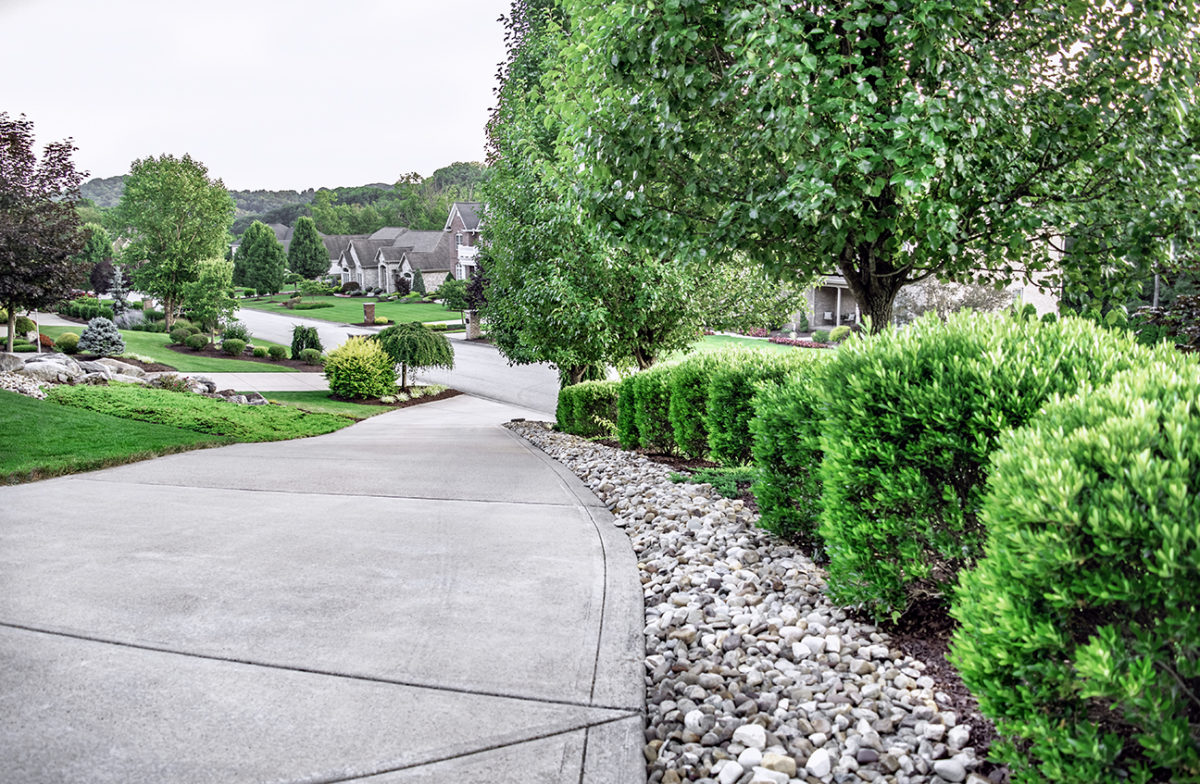 Beall's Landscaping beautiful design projects.